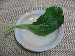 Komatuna1